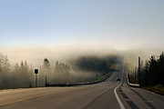 Foggy Morning Digital Art - Road To Nowhere Rural Landscape by Christina Rollo