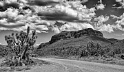 Mountain Road Prints - Road To Skywalk Print by Ron Regalado