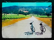 Winery Digital Art - Road to Sonoma by James Lindstrom
