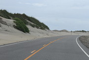 Outer Banks Metal Prints - Roadside Dunes Metal Print by Cathy Lindsey