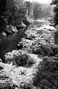 Barbara Smith Metal Prints - Roadside Stream New Zealand Metal Print by Barbara Smith