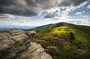 Clouds Prints - Roan Mountain Rhododendron Bloom - A Glorious Greeting Print by Dave Allen