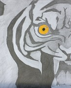 The Tiger Drawings - Roar by Michael Hugue