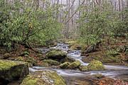 Rhonda McClure - Roaring Fork Stream