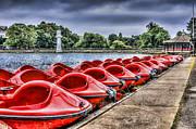 Steve Purnell - Roath Park 2