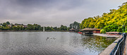 Steve Purnell - Roath Park Panorama 1