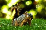 Rateitart Digital Art Prints - Robbie the Squirrel - 7376 - F Print by James Ahn