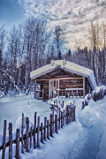 Wooden Metal Prints - Robert Service Cabin Winter Idyll Metal Print by Priska Wettstein