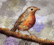 Gary Bodnar - Robin On Branch
