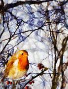 Valerie Anne Kelly Art Framed Prints - Robin redbreast Framed Print by Valerie Anne Kelly