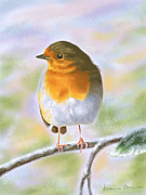 Animal Prints - Robin Print by Veronica Minozzi