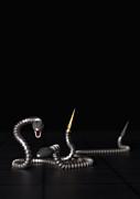 Liam Liberty - Robo Snakes