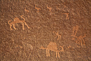 Petroglyph Prints - Rock art at Wadi Rum in Jordan Print by Robert Preston