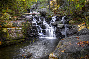 Fall River Scenes Posters - Rock Creek Falls Poster by Debra and Dave Vanderlaan