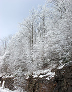 Christmas Holiday Scenery Art - Rock Cut in Winter by Andrew Govan Dantzler