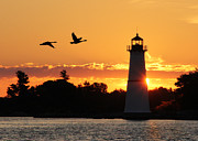 Bay St. Lawrence Posters - Rock Island Lighthouse Silhouettes Poster by Lori Deiter