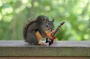 Warlock Framed Prints - Rock n Roll Squirrel Framed Print by Peggy Collins