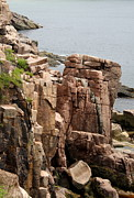 Rockformation Mount Desert Coast Print by Christiane Schulze Art And Photography