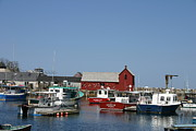 Rockport  Ma Framed Prints - Rockport Harbor Framed Print by Denyse Duhaime