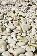 Rocks Abstract Print by Svetlana Sewell