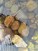 David Stribbling - Rocks and Pebbles 2