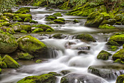 Smokey Mountains Prints - Rocks and Water Print by Todd Bielby