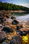 Horizon Metal Prints - Rocks at shore of Georgian Bay Metal Print by Elena Elisseeva