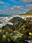 Halona Framed Prints - Rocks of Mokuleia - No.112  Framed Print by Joe Finney