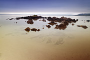 Water Pyrography Metal Prints - Rocks on sandy beach covered with smoth calm sea  Metal Print by Dirk Ercken