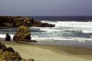 William Havle - Rocky Beach Mendocino