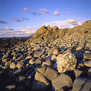 Shorelines Photos - Rocky coast. Normandy. France. Europe by Bernard Jaubert