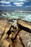 Windnsea Photos - Rocky Cove by Peter Tellone