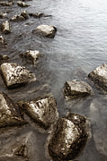 Stepping Stones Photo Prints - Rocky Print by Margie Hurwich