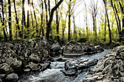 Rocky Digital Art - Rocky Marsh Creek Gettysburg Pa by Bill Cannon