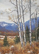 Robert Stump - Rocky Mountain Aspen