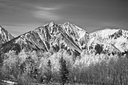 Winter And Autumn Landscape Framed Prints - Rocky Mountain Autumn High In Black and White Framed Print by James Bo Insogna