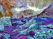 Ann Johndro-Collins - Rocky Mountain Boulders