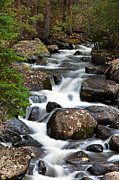 Earthy Water Prints - Rocky Mountain National Park Cascade  Print by The Forests Edge Photography - Diane Sandoval