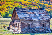 Mountain Cabin Posters - Rocky Mountain Rural Rustic Cabin Autumn View Poster by James Bo Insogna