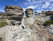 Mummies Prints - Rocky Mountain Stone Faces Print by Fran Riley
