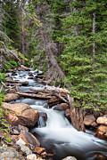 James BO  Insogna - Rocky Mountain Stream