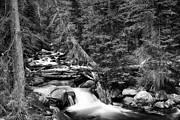 James BO  Insogna - Rocky Mountain Stream Scenic Landscape BW