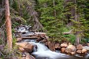 James BO  Insogna - Rocky Mountains Stream Scenic Landscape