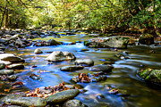 Gatlinburg Tennessee Prints - Rocky River Print by David Morgan
