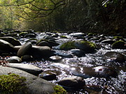 Gatlinburg Tennessee Prints - Rocky River Print by Steven Overton