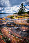 Overcast Art - Rocky shore of Georgian Bay by Elena Elisseeva