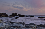 Pink Skies Prints - Rocky Shore of Sachuest Print by Andrew Pacheco