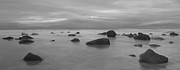 Roy Mcpeak Metal Prints - Rocky Shore Metal Print by Roy McPeak