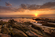 Rocky Coast Photos - Rocky Sunset by Peter Tellone