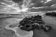 Beachscapes Posters - Rocky Surf in Black and White Poster by Debra and Dave Vanderlaan
